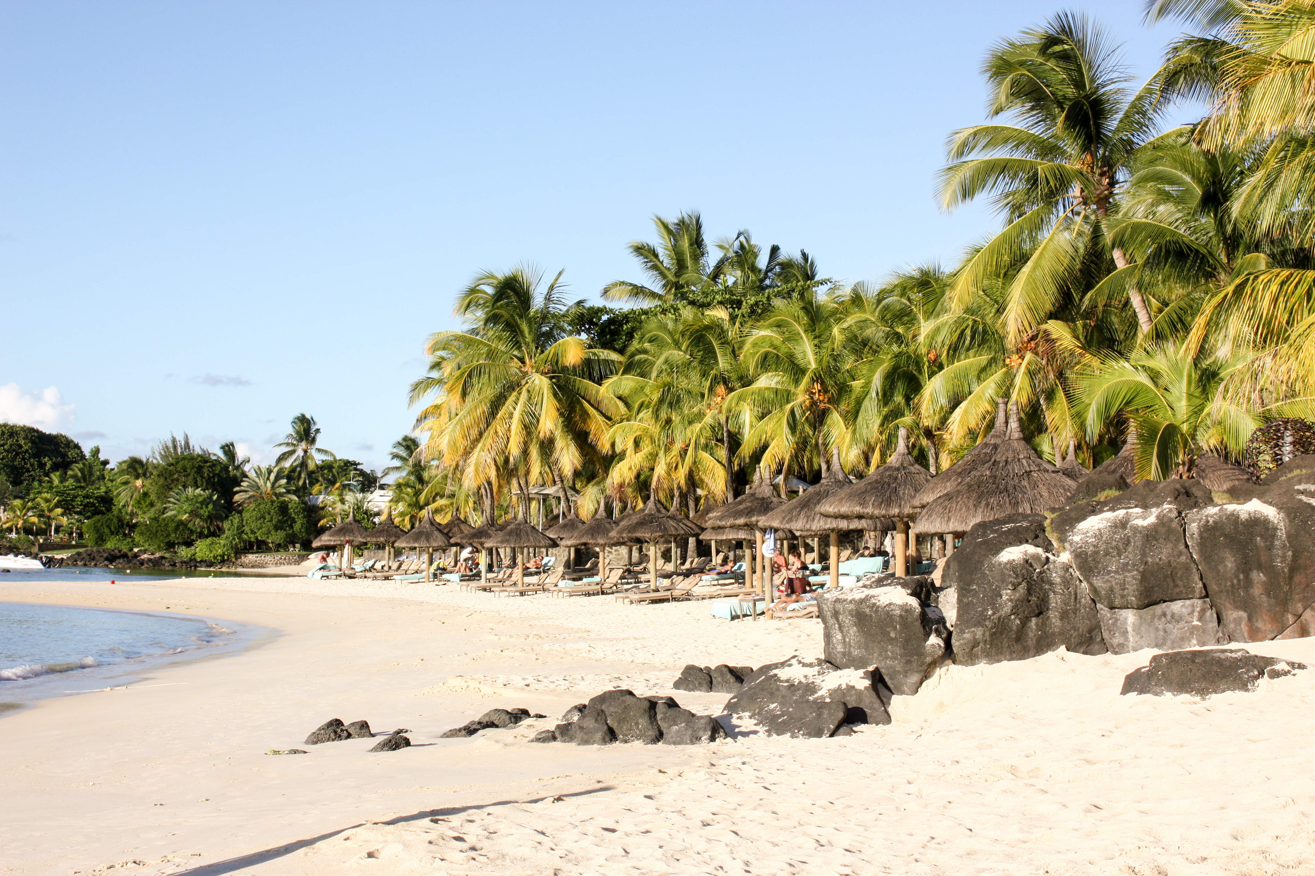 Royal Palm | Mauritius