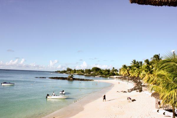 Mauritius - Royal Palm