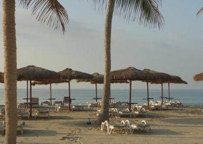 Oman_Rotana_P1160821